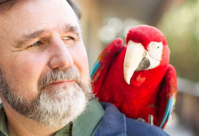 Dr. Waldsmith with Judy the macaw on his shoulder.